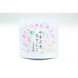 """Organiczna Herbata Japońska Pu""""er Yamabuki Nadeshiko 20g (10x2g) Osadatea"""