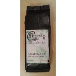 GUATEMALA Kawa ziarnista 100% arabica 250g RHODIGIUM CAFFE